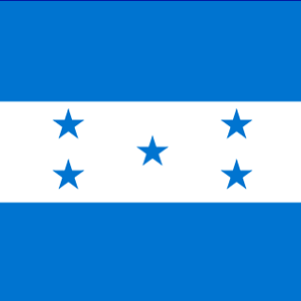 The ORL Society of Honduras