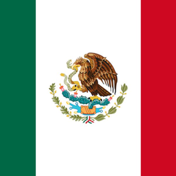 FEDERACION MEXICANA DE ORL
