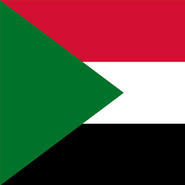 Sudan ORL Society